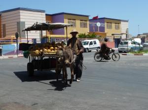 K1024_Obstverkäufer mit Esel