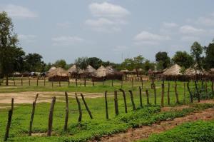K1024_Senegal-Dorf